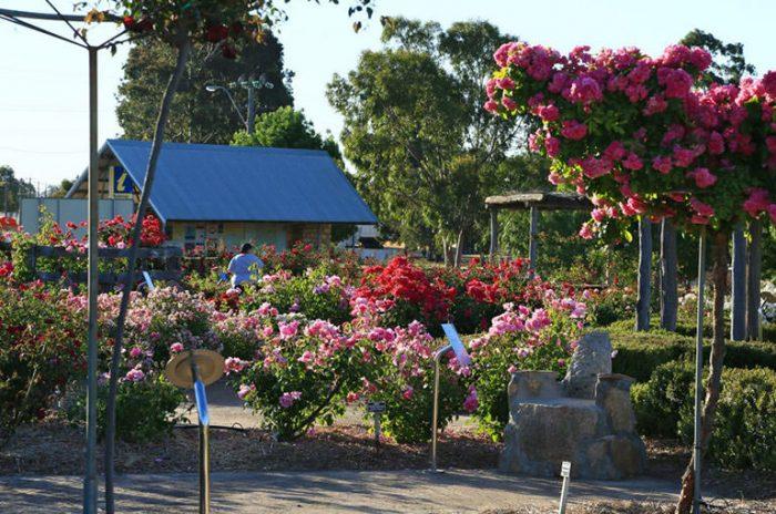 Kodja Place, Kojonup | Great Southern Treasures, Western Australia